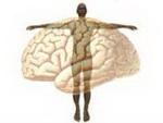 PSICOBIOLOGÍA APLICADA Y PSICOSOMÁTICA